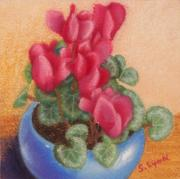 Macro Pastels Posters - Red Cyclamen Blue Pot Poster by Sandra Lynn