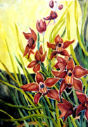 Helen Mixed Media Posters - Red Cymbidiums Poster by Helen Kern