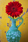Red Flowers Art - Red Daisy In Grape Vase by Garry Gay