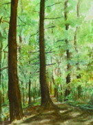 Sunlit Paintings - Red Deer Village Trail by Kathy Dolan