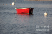 Row Boat Prints - Red dingy at Rye Harbor - Rye New Hampshire USA Print by Erin Paul Donovan