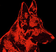 Shepherds Posters - Red Dog - German Shepherd Poster by Sandy Keeton