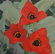 Floral Pictures Painting Prints - Red Emperor Tulip Study Print by Marlene Petersen