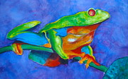Reptiles Painting Prints - Red-Eyed GreenTree Frog no. three Print by Myra Evans