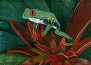 Reptiles Painting Prints - Red-eyed Leaf Frog Print by Patsy Fumetti  - SouthWest Design Studio