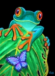 Frog Paintings - Red-eyed tree frog and butterfly by Nick Gustafson