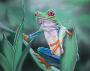 Red-eyed Tree Frog Painting Prints - Red eyed tree frog Print by Lee Morgan