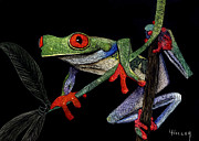 Etching Mixed Media - Red Eyed Tree Frog by Linda Hiller