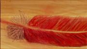 Red Feather Print by Anne-Elizabeth Whiteway