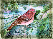 Francis Digital Art Posters - Red Finch Poster by Mindy Newman