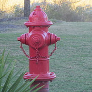 Ems Posters - Red Fire Hydrant Poster by Cathy Lindsey