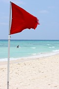 Beaches Posters - Red Flag Poster by Sophie Vigneault
