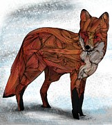 Red Fox Print by Ben Geiger