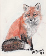 Marqueta Graham - Red Fox in Snow