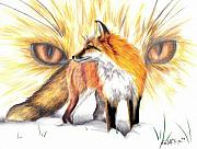 Prismacolor Colored Pencil Drawings Prints - Red Fox Print by Scarlett Royal