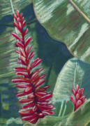 Tropical Art Pastels Posters - Red Ginger Poster by Patti Bruce - Printscapes