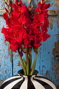 Red Gladiolus Photos - Red glads against blue wall by Garry Gay