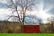 Farm Scenes Art - Red Glory by Emily Stauring