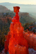 Thor Photo Framed Prints - Red glow of the sunrise on Thors Hammer in Bryce Canyon Framed Print by Pierre Leclerc