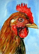 Pete Maier Metal Prints - Red Head Metal Print by Pete Maier
