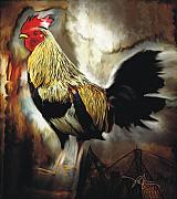 Farm Mixed Media Prints - Red Headed Rooster Print by Bob Salo