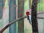 Florida State Pastels - Red-Headed Woodpecker in FL by Dana Schmidt