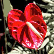 Kerri Ligatich Digital Art - Red Heart by Kerri Ligatich