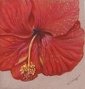 Botanical Pastels Posters - Red Hibiscus in Dew Time Poster by Carol Wisniewski