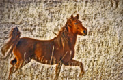 Postcards Originals - Red Horse Art by James Steele