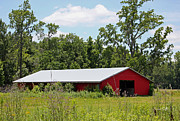 Horse Barn Photos - Red Horse Barn by Suzanne Gaff