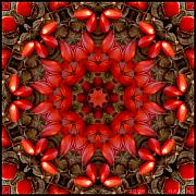 Kaleidoscope Art - Red Kaleidoscope No. 1 by Lyle Hatch