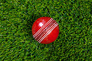Cricket Posters - Red leather cricket ball on grass Poster by Richard Thomas