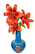 Red Lilies In Blue Vase Print by Susan Leggett
