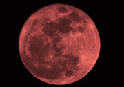 Full Moon Art - Red Moon by Bill Cannon