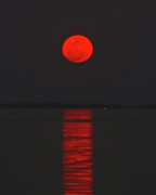 Supermoon Photos - Red Moon Rising  by Peg Urban