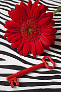 Red Flowers Art - Red Mum and Red Key by Garry Gay