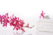 Wellbeing Prints - Red Orchid With Towel Print by Atiketta Sangasaeng