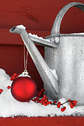 Watering Can Posters - Red ornament on watering can Poster by Sandra Cunningham