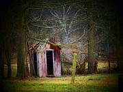 Outhouses Metal Prints - Red Outhouse Metal Print by Joyce  Kimble Smith