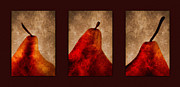 Harvest Art Metal Prints - Red Pear Triptych Metal Print by Carol Leigh