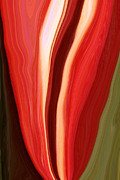 Linnea Tober - Red Pepper Abstract2