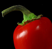 Red Photographs Photos - Red Pepper by Davor Sintic