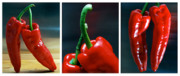 Kitchen Wall Originals - Red Pepper Triptych by Terence Davis