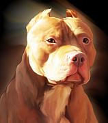 Pitbull Posters - Red Pit Bull by Spano Poster by Michael Spano