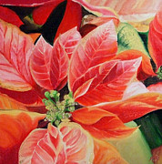 Karen Hurst - Red Poinsetta