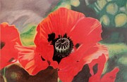 Floral Pastels Originals - Red Poppies by Terri Thompson