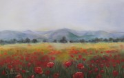 Poppies Field Pastels - Red Poppy Field by Sabina Haas