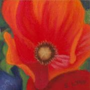 Miniatures Pastels - Red Poppy Glowing by Sandra Lynn