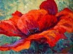 Path Painting Framed Prints - Red Poppy III Framed Print by Marion Rose