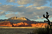 Eleu  Tabares - Red Rock Canyon - Nevada